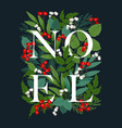 holiday frame with world noel vector image