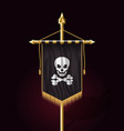 jolly roger jack pirate flag format vector image