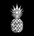 pineapple grunge with leaf tropical exotic fruit vector image vector image