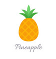 pineapple icon with title vector image