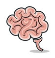brain human smart icon vector image
