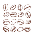 Coffee bean Isolated Hand drawn vector image vector image