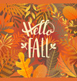hello fall greeting banner on jungle background vector image vector image