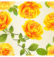 seamless texture flower yellow roses festive vector image vector image