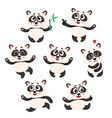 set of cute smiling baby panda characters vector image vector image