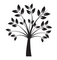 shape black tree with leaves outline vector image vector image