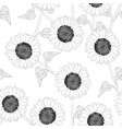 sunflower outline on white background vector image vector image