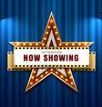 theater sign star vector image vector image