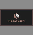 ur hexagon logo design inspiration vector image vector image
