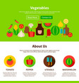 vegetables web design vector image