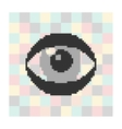 pixel icon eye on a square background vector image