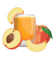 a glass fresh peach juice vitamin refreshing vector image vector image