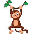 Cartoon monkey hanging in tree vector image vector image