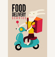 cartoon rabbit with bag on scooter delivery food vector image