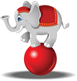 Elephant at the circus vector image vector image
