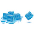 ice cubes with water drops vector image