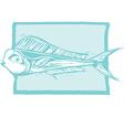 mahi fish vector image vector image