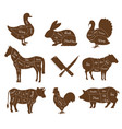 meat animal body parts isolated livestock pets vector image