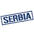 serbia blue square stamp vector image vector image