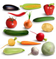 vegetables or veggies farmer harvest exotic vector image