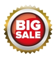 Big Sale badge vector image