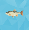 Fish made with triangles on blue polygonal vector image vector image