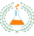 glory of chemistry vector image vector image