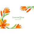 lily painted watercolor vector image vector image
