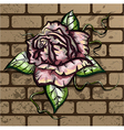 Rose on the wall vector image vector image