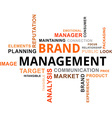word cloud brand management vector image vector image