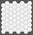 hexagon texture pattern vector image