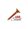 live sound concert festival reed pipe icon vector image