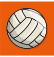 volleyball sport ball isolated icon vector image vector image