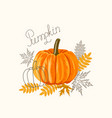 an orange big pumpkin with autumn leaves vector image vector image