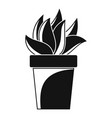 cactus plant pot icon simple style vector image