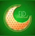 decorative moon on green background vector image