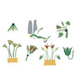 egypt cane branches set vector image vector image