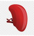 healthy spleen icon cartoon style vector image vector image