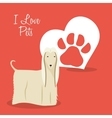 i love pets heart poster vector image