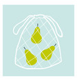 net fruit bag with pears zero waste concept vector image vector image