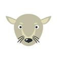 rat face in flat design vector image vector image