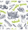 vegetables retro seamless pattern vector image