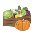 wooden box with vegetables vector image vector image