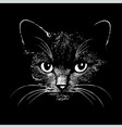 Cat head animal for t-shirt vector image