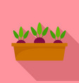 beetroot in ground pot icon flat style vector image