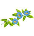 Blue flowers with green leaves vector image vector image
