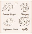 Dog pets vector image