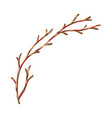 dry branch vector image