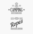 summer high rope park camp and lantern camping vector image