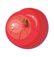 Red Apple Isolated Pomaceous Fruit vector image